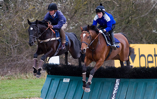 Betfair Lambourn Open Day 2015